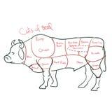 Rindfleisch geschnitten oder Rindfleischstücke stock abbildung