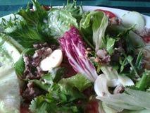 Rindfleisch-Salat Stockbild
