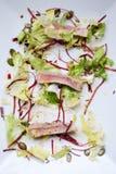 Rindfleisch-Salat lizenzfreies stockbild