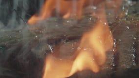 Rindfleisch-Steak Flambe stock video