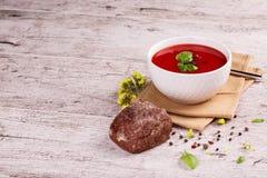 Rindfleisch und Gemüsesuppe mit Tomate und Dill Ukrainischer Borscht auf einem weißen Hintergrund lizenzfreies stockbild