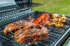 Rindfleischsteak und gegrilltes Gemüse in der Natur lizenzfreies stockfoto