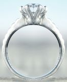 Ring Royalty Free Stock Photos