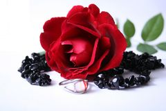 Ring And Rose Stock Photography
