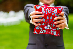 Ring Bearer Holding Rings on Pillow Stock Photo
