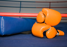 Ring boxing gloves Stock Photo