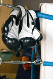 Ring boxing gloves Royalty Free Stock Photography