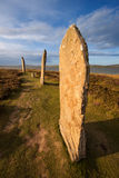 Ring Of Brodgar, Orkney, Escócia Fotos de Stock Royalty Free