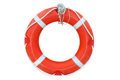 Ring-buoy on the white background Royalty Free Stock Photo