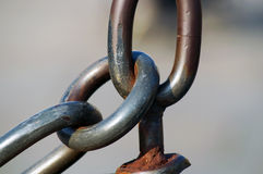 Ring chain Stock Images