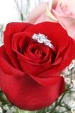 Ring in der Rosen-Nahaufnahme stockfotos