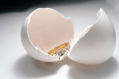 Ring & egg peel. Isolated ring & egg peel royalty free stock photos