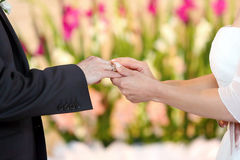 Ring exchange Royalty Free Stock Photography