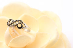 Ring on flower. Beautiful macro shot of a ring on a soft flower. Good for wedding products Stock Photos