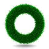 Ring from Grass. Beautiful Ring from Grass on White royalty free illustration