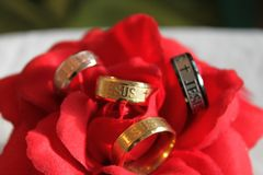 Ring, Jewellery, Petal, Rose Family royalty free stock photo