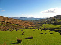 Ring of Kerry 09 stock images