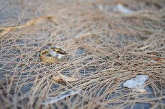 Ring of love. Marriage is the true love to someone Royalty Free Stock Images