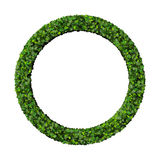 Ring made from green leaves. Beautiful graphic made of green leaves on gradient background Stock Photos