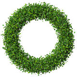 Ring made from green leaves. Royalty Free Stock Images