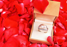 Ring with pearl in a gift box for proposal Royalty Free Stock Images