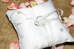 Ring Pillow. With rings surrounded by rose petals Stock Images