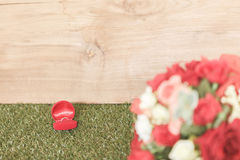 Ring in red box Stock Photography