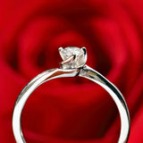 Ring with red rose Royalty Free Stock Image