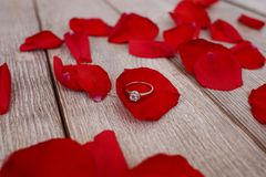 Betrothal. Ring on red rose petals royalty free stock images