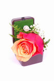 Diamond ring and rose stock photos