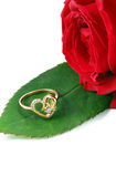 Ring with rose Stock Image