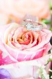 Ring on rose Royalty Free Stock Image