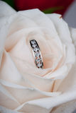 Ring and rose. Diamond wedding band inside a white rose bud Royalty Free Stock Images