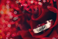 Ring and Rose. Stock Images