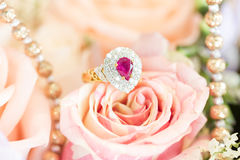 Ring on rose Stock Photos