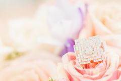 Ring on rose Stock Photography