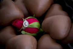 Ring on Rose Surrounded by Chocolates Stock Image