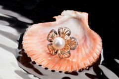 Ring And Shell Royalty Free Stock Image