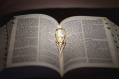 Ring shot on the bible Stock Photos