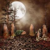 Ring of stones with skulls Royalty Free Stock Photo
