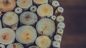 Ring Tree Timber Pile annuel images libres de droits