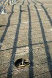 Ring und Gitter Stockbild