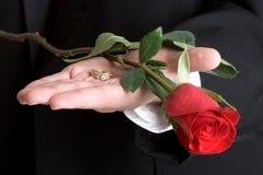 Ring und Rose Stockbild