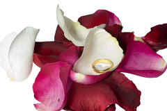 Ring unter rosafarbenen Blumenblättern Lizenzfreie Stockfotos