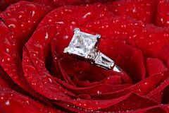 Ring van de diamant in rood nam toe Royalty-vrije Stock Fotografie