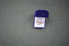 Ringa do casamento Imagens de Stock Royalty Free