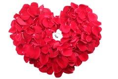 Ringa i mitt av en hjärta av kronblad för röda rosor Arkivbild