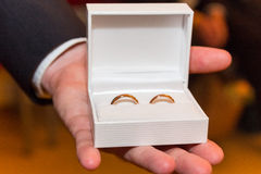 The ringbearer presents the wedding rings Royalty Free Stock Photography