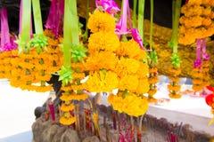 Ringblomma Garland Flower Arkivfoto