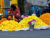 Ringblommablommasäljare på Diwali Premorning royaltyfria bilder